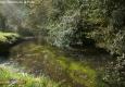 Airou: Moulin de la forêt