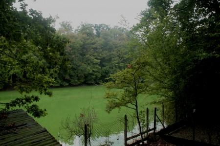 Barrage de Vezins Les Biards septembre 2009